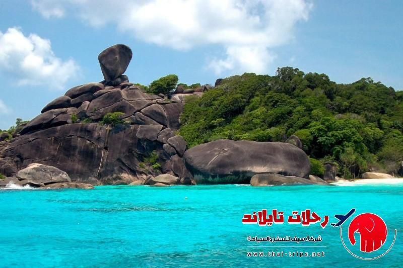 رحلة بحرية يوم كامل جزيرة تاشاي وجزر سميلان Tachai Similan Island 1 Day Trip