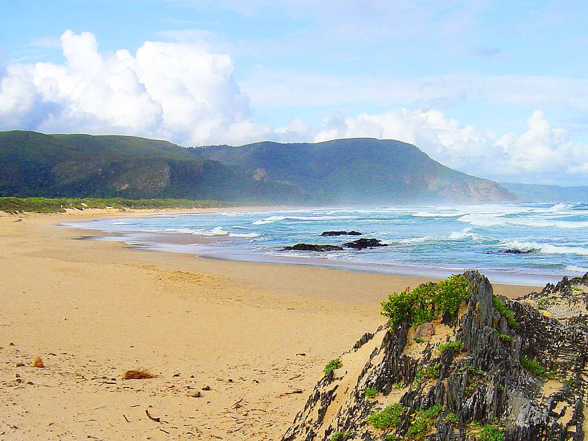 Garden Route, Knysna, South Africa in 2020 South africa