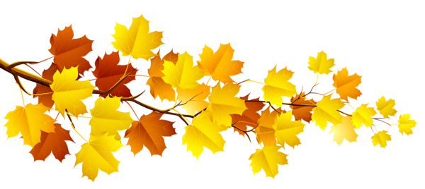 Fall leaves wallpaper. Pin by manjunath on
