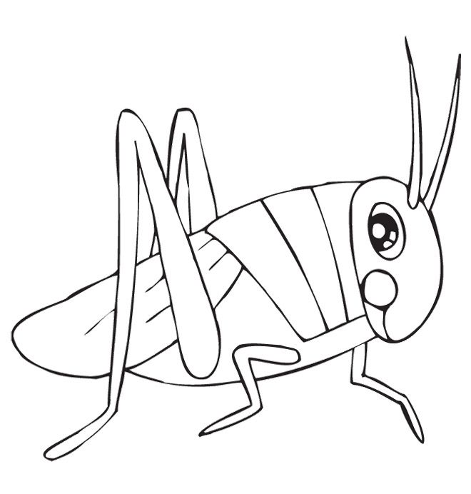 Cute Grasshopper Coloring Pages
