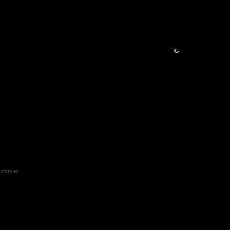 Crow Silhouette Kata Kata Indah