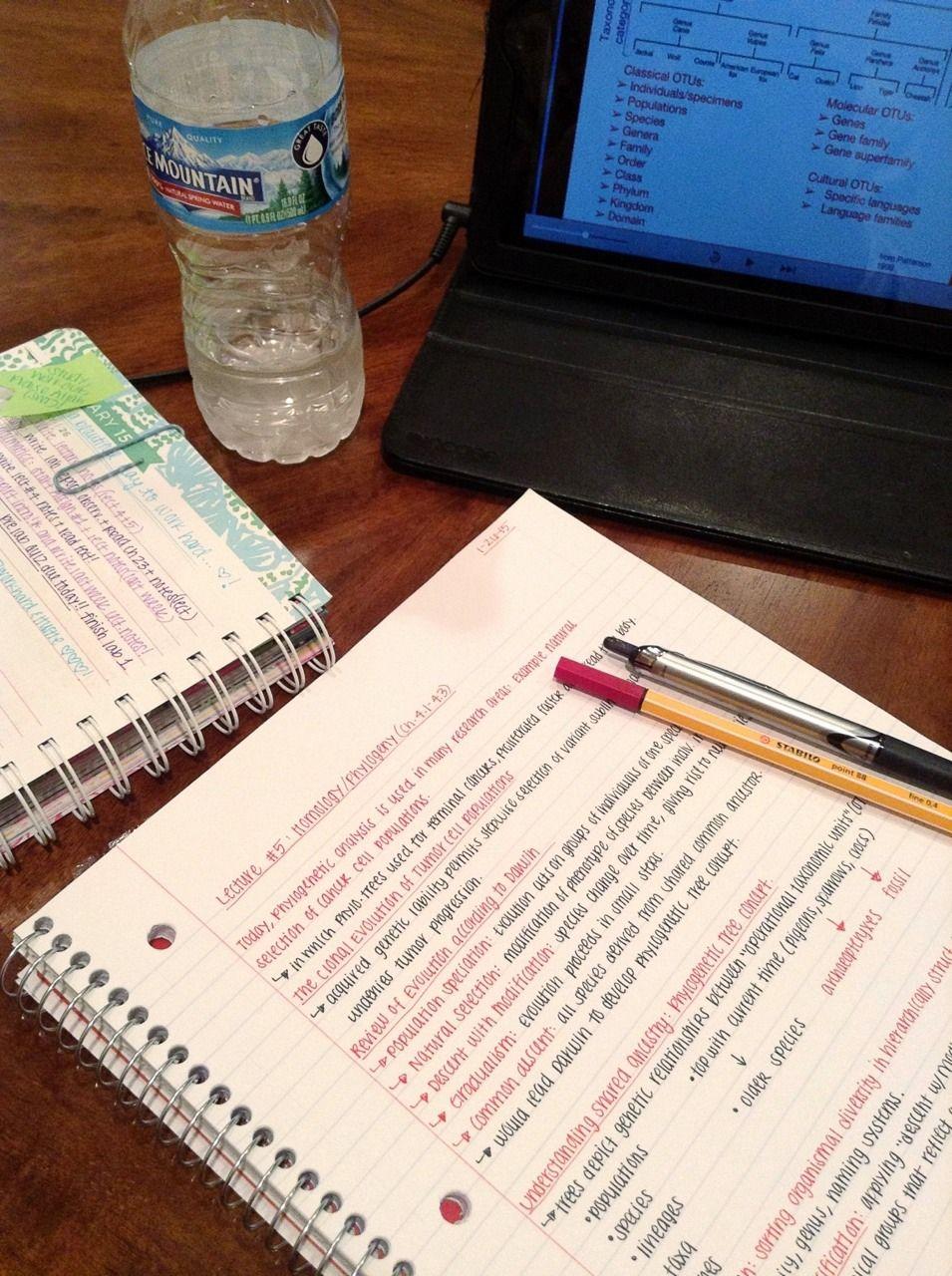 university, school, student, study, notes, inspo ...