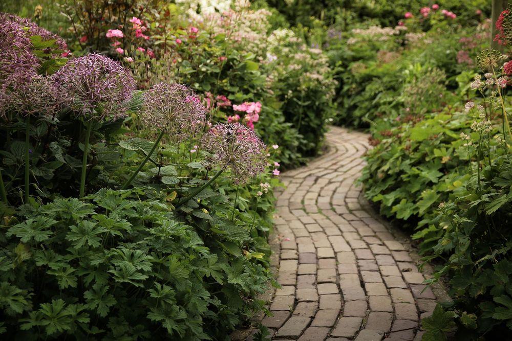 Tuinontwerp-romantische-tuin | TuinTuin