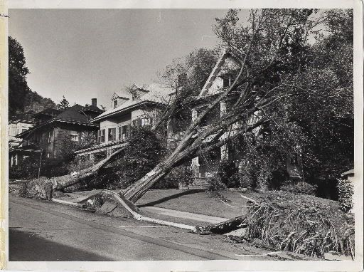 Columbus Day Storm 1962 Anyone Who Lived Through It And Was Old Enough To Remember Has Stories Oregon State Of Oregon Oregon Usa