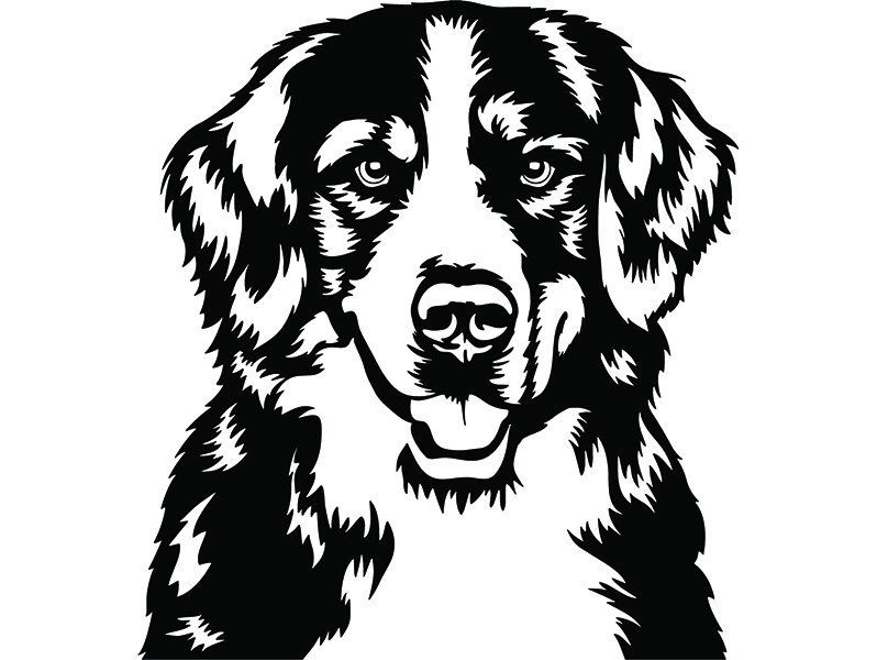 Bernese Mountain 22 Dog Smiling Happy Breed Puppy K 9 Etsy Dog Drawing Dog Silhouette Cricut Animals