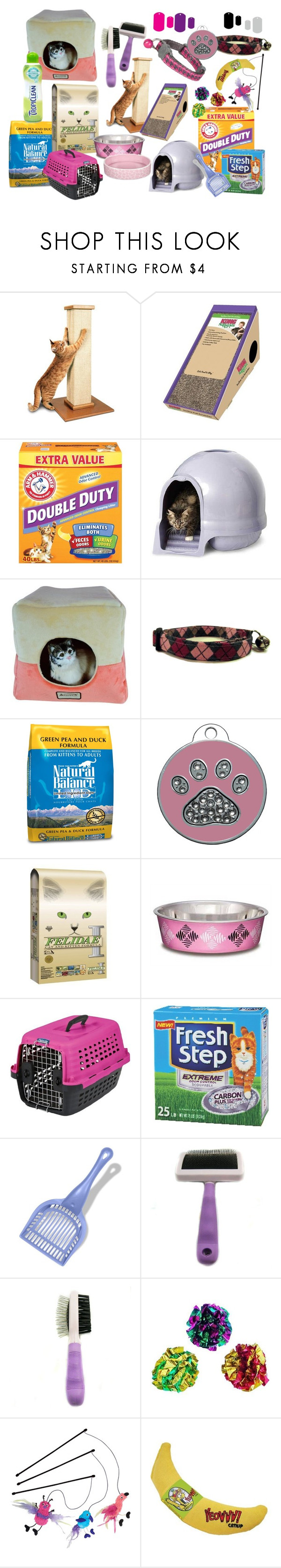 CAT STARTER KIT By Audreyterp Liked On Polyvore Featuring Interior Interiors