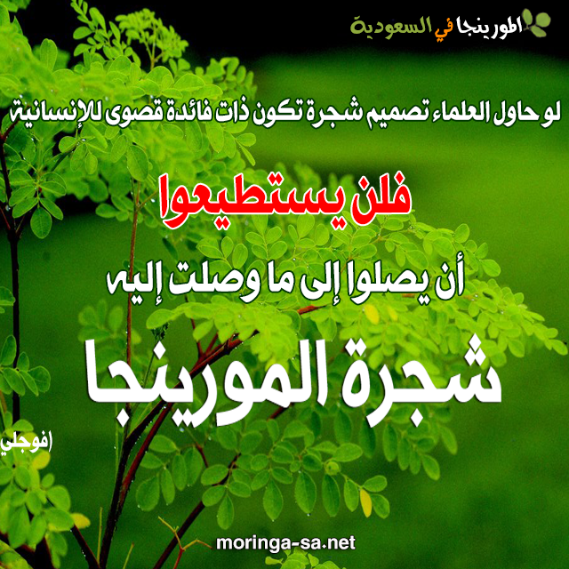 الشجرة الطيبة Natural Remedies Healthy Life Medical