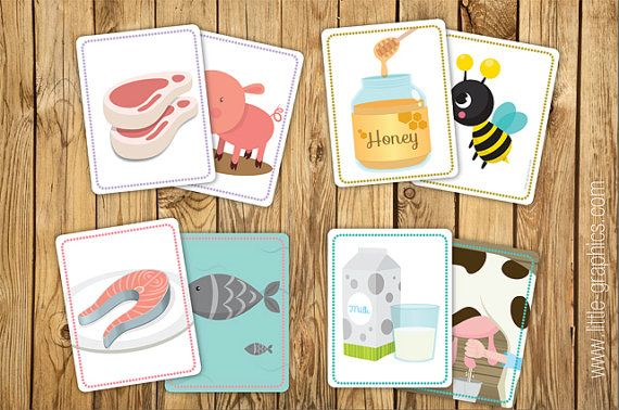 avery flash cards template - where does food come from matching game flash cards