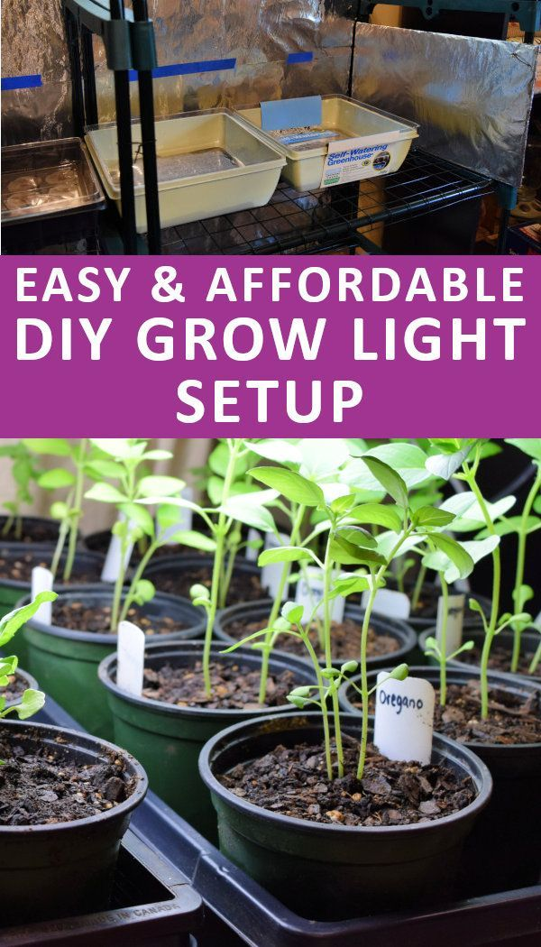 Build Your Own Grow Light System Starting seeds indoors
