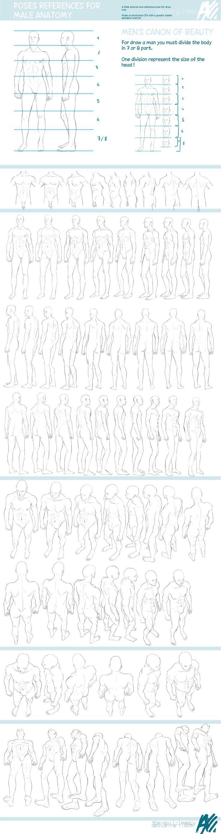 Guías de dibujo: Anatomía y movimientos del cuerpo | El cuerpo ...