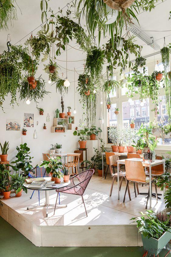 Rincón con plantas colgantes y muebles vintage en la cafetería Wildernis Coffee & Plants de Amsterdam.