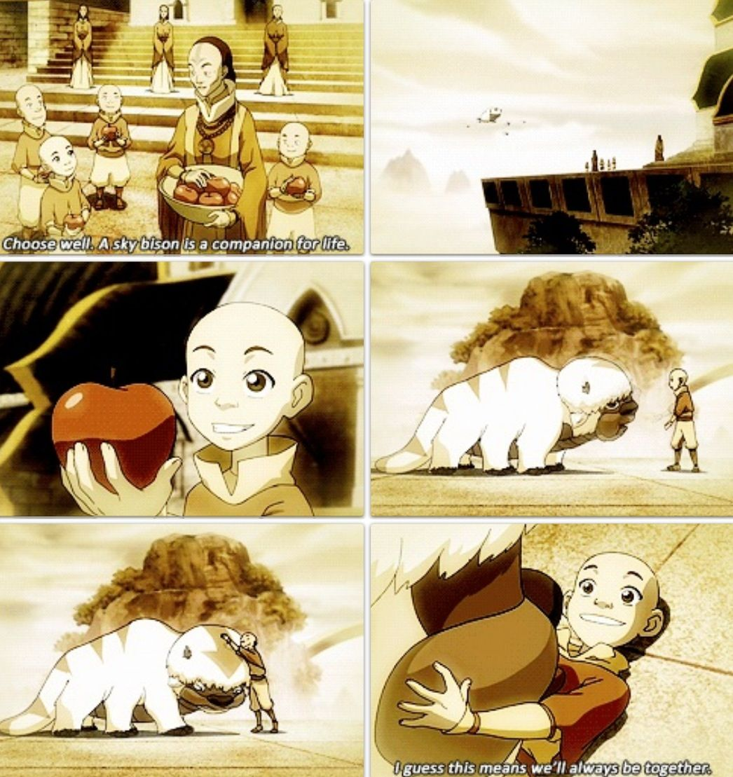 Avatar Airbender: Avatar The Last Airbender: Aapa And Aang :)