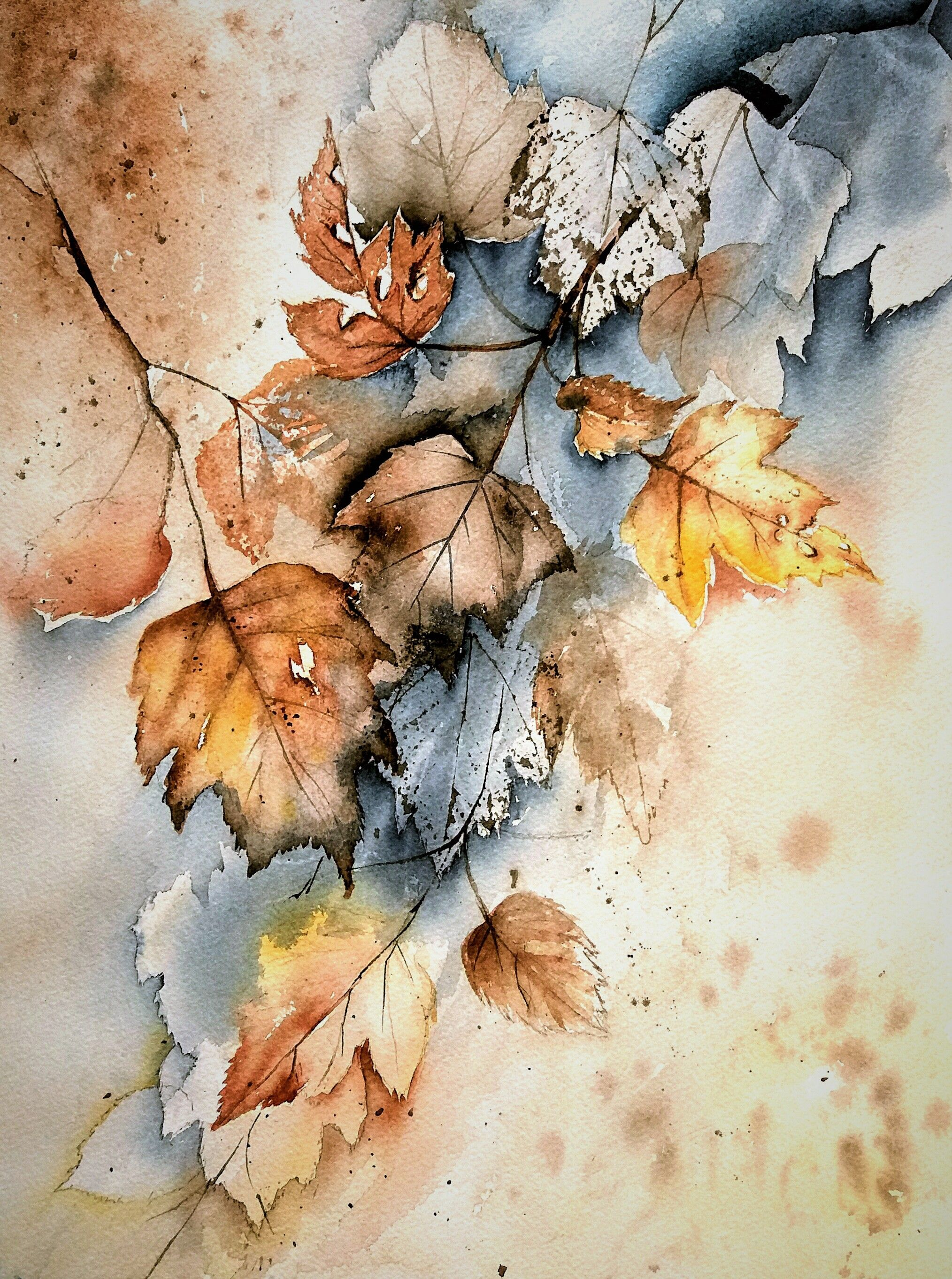 Watercolor Art Botanical Art Watercolor