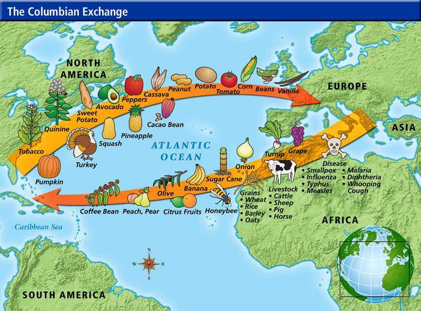 Columbian Exchange List of Old World and New World Foods Accessed - new world map online puzzle