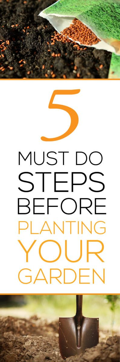 You have survived the long winter months and spring is finally upon us! You begin planning your spring planting projects and look forward with anticipation to the joys of summer gardening and harvest. BUT WAIT!!! Here are 5 MUST DO steps that every gardener should complete BEFORE planting your treasured garden:
