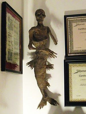 How to make a Fiji Mermaid...