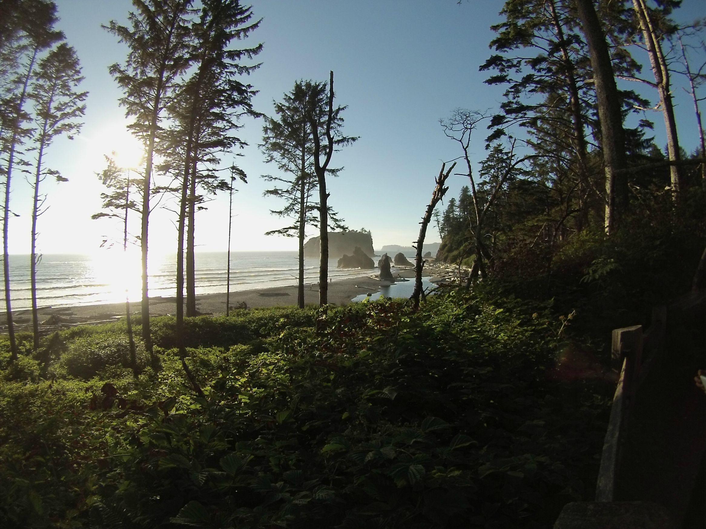Ruby Beach Olympic National Park Washington [OC][2592x1944]