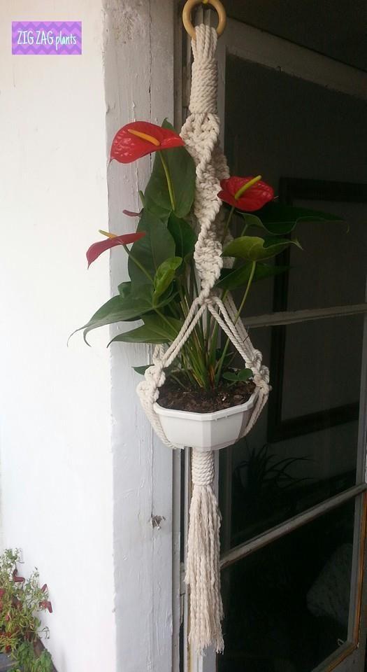 Zigzagplants macrame k pinterest macetas colgantes macetas y colgantes - Colgadores de macetas ...