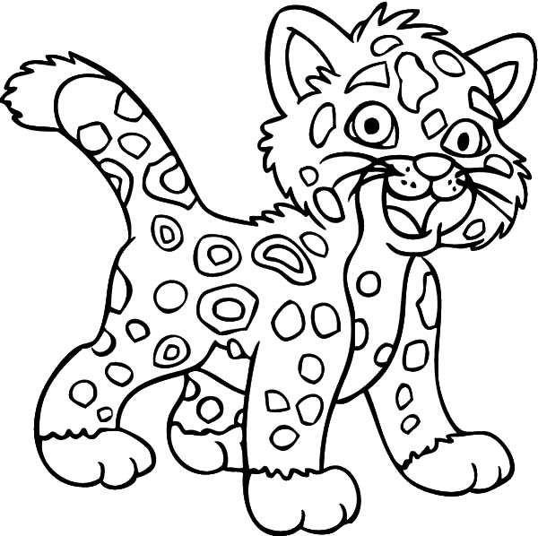 Laughing Jaguar Coloring Pages Bulk Color Coloring Pictures For Kids Zoo Animal Coloring Pages Free Coloring Pictures