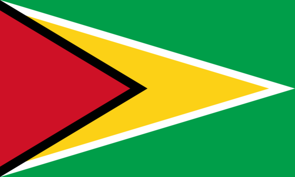 Guyana Country Flag Guyana Flag Guyanese Flag Flags Of The World