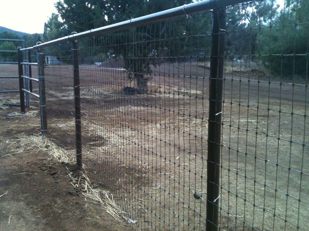 Ranch Rail with non-climb horse fence
