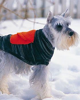 M DOG COAT CROCHET PATTERN    CASUAL DOG SWEATER SIZE S L
