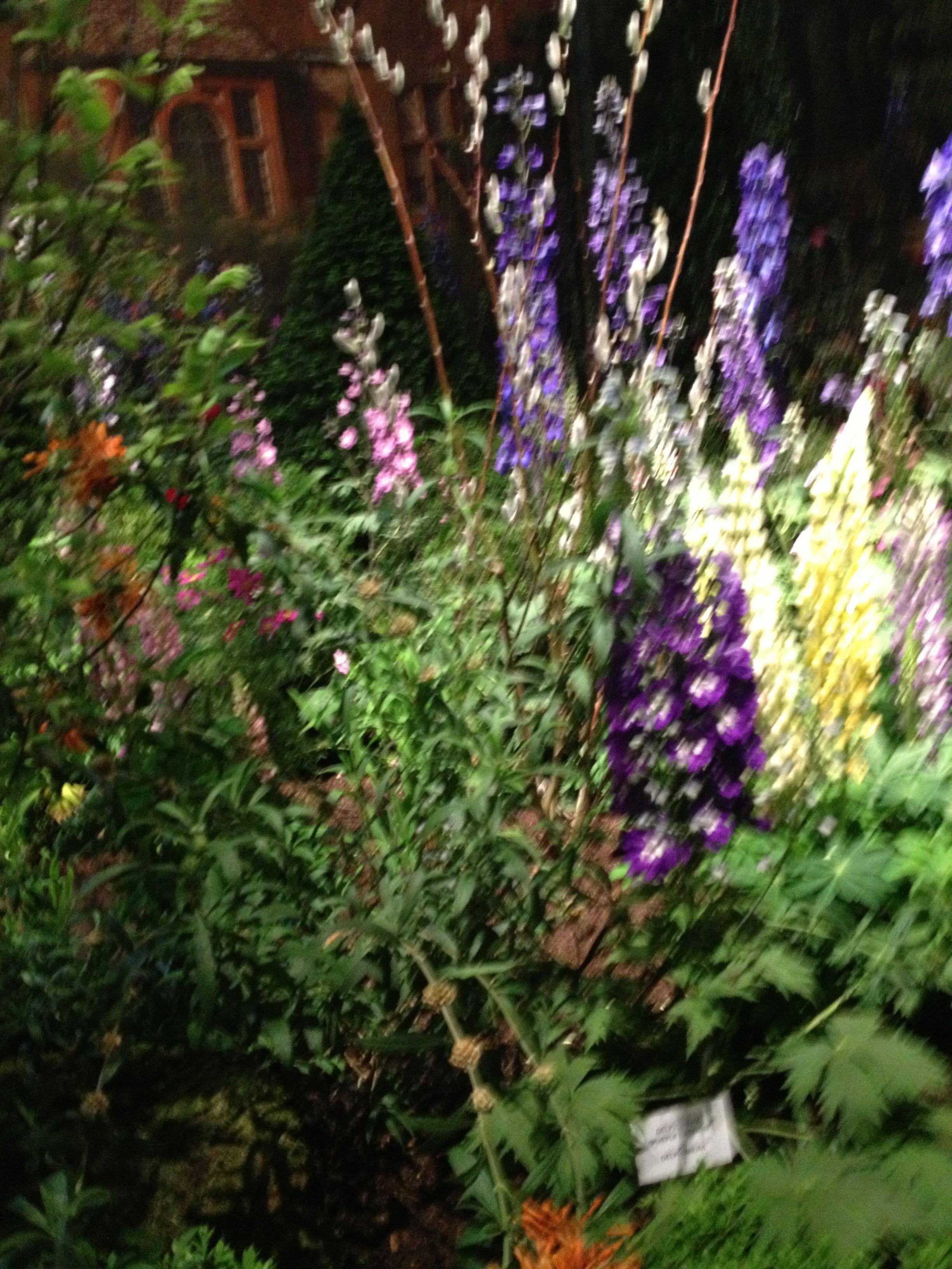 Flower show. Philadelphia