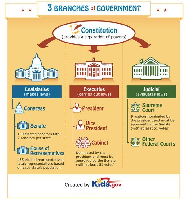 Flow Chart Of Us Govt Three Branches Of National Government A