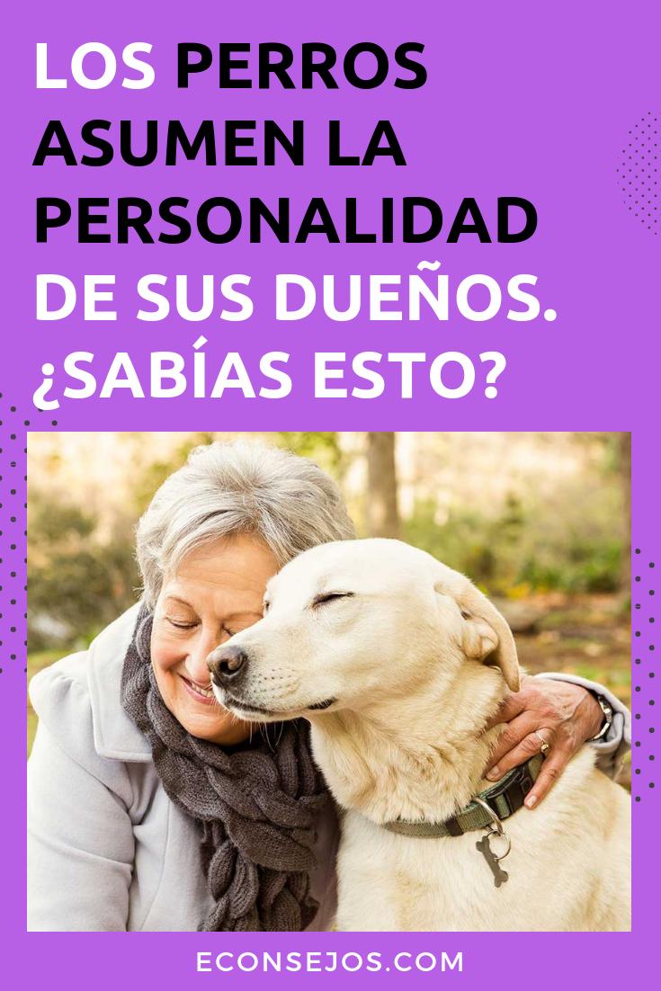 Photo of Ve lo que las investigaciones dicen sobre los perros que se parecen a sus dueños