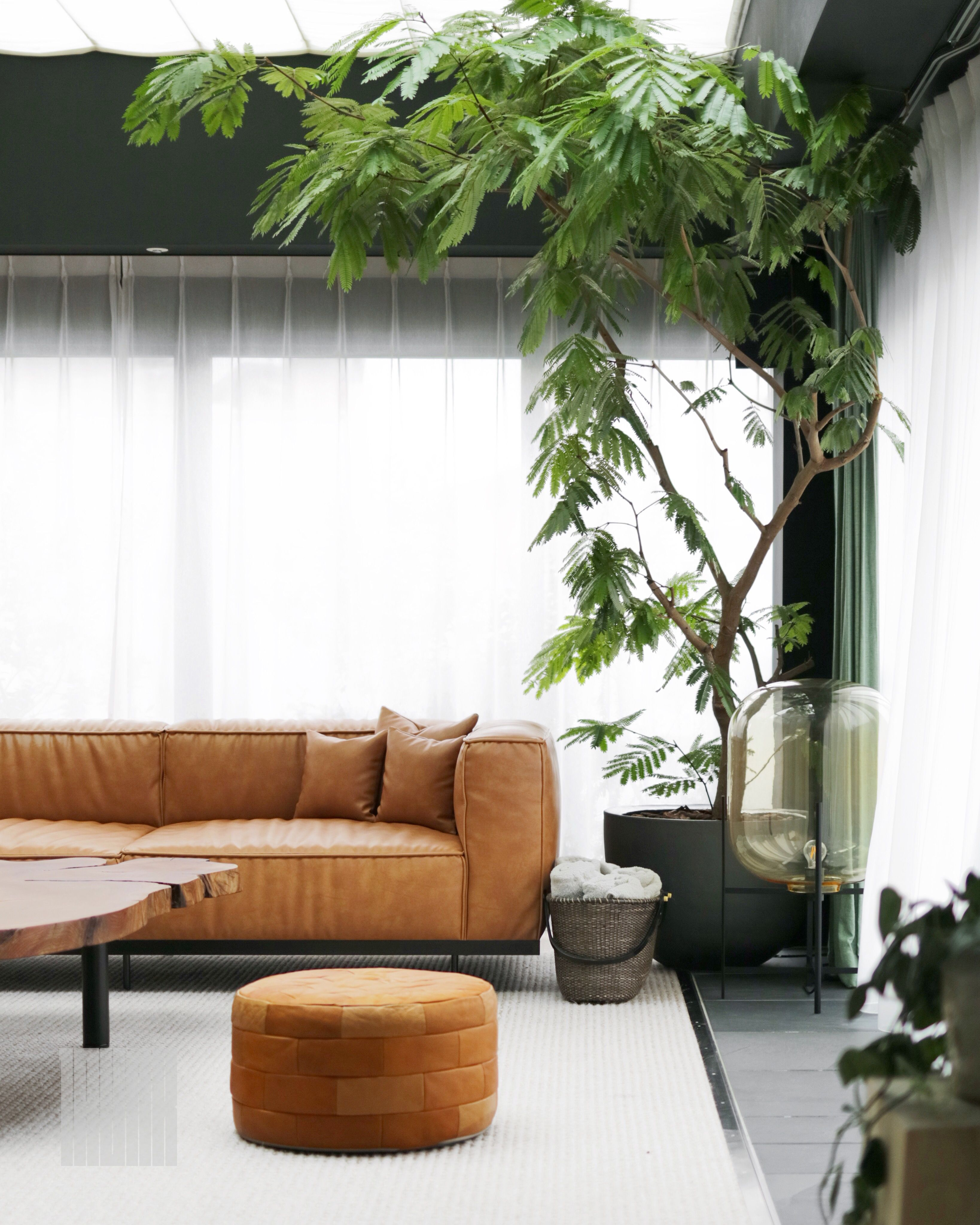 TRUNK(HOTEL) boutique hotel in Tokyo, Japan. A view into the living ...