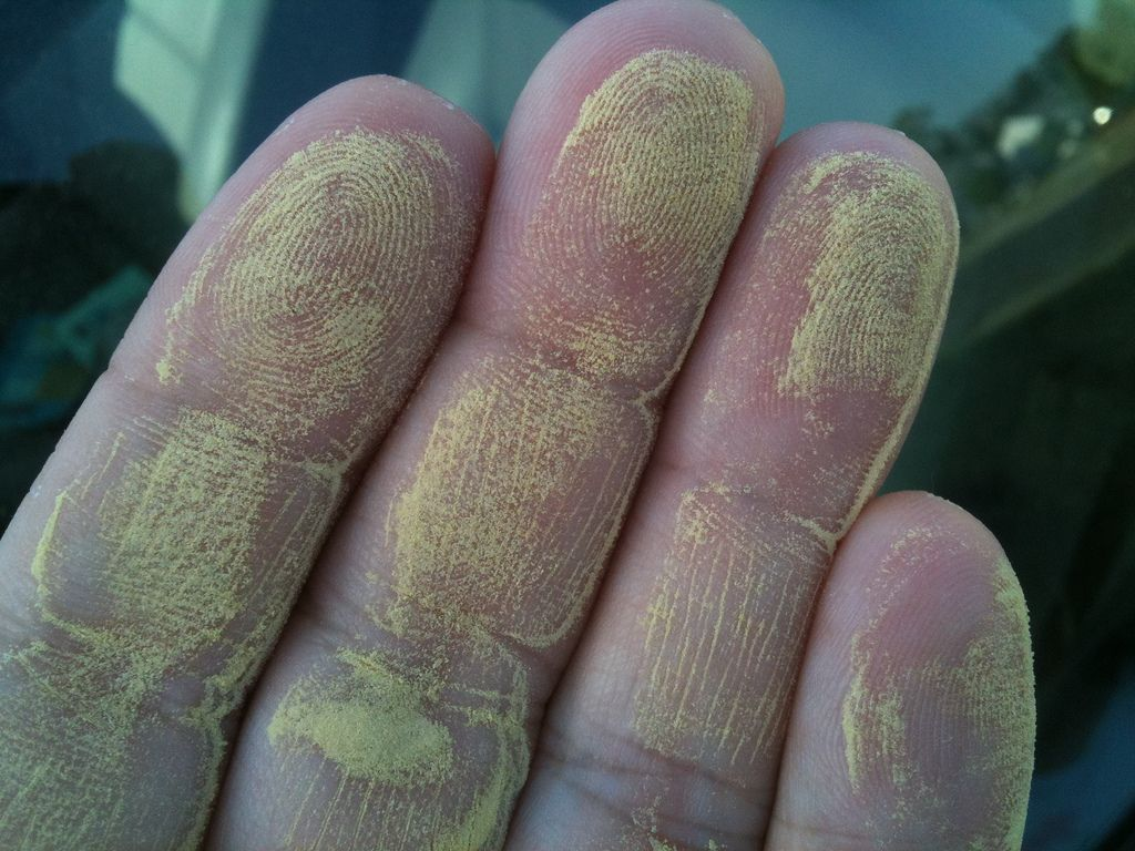 Have A Pollen Allergy 5 Ways To Avoid Pollen Alleviate Your Outdoor Allergy Symptoms Natural Remedies For Allergies Allergy Remedies Pollen Allergies
