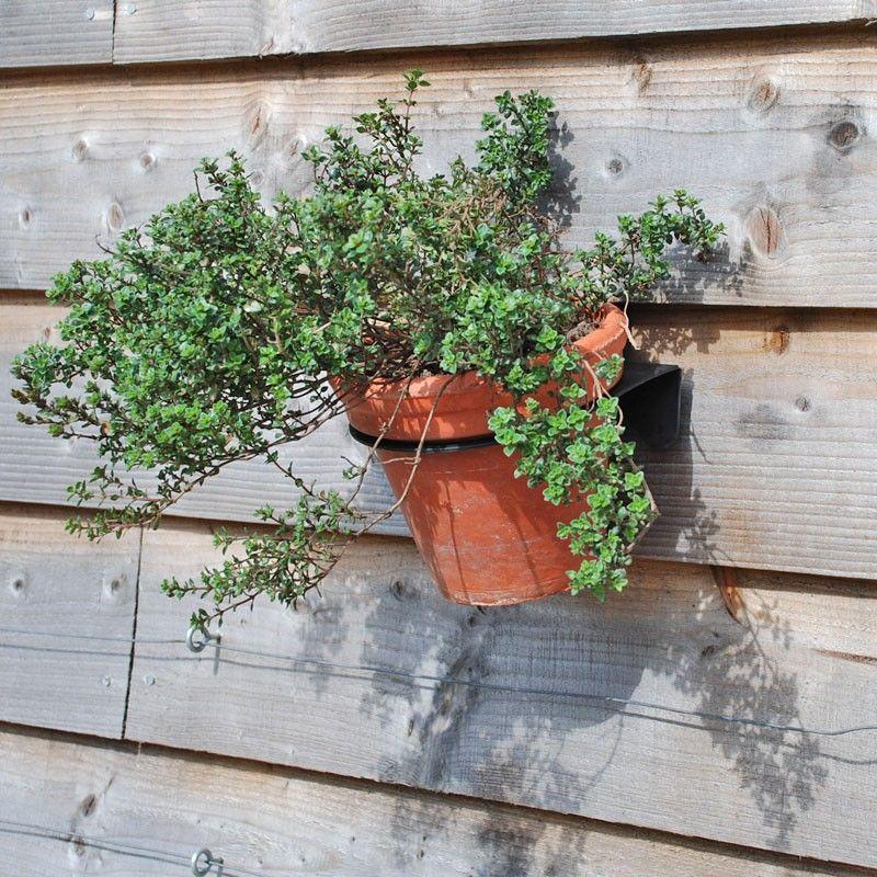 Fence Plant Pot Holder | Vertical Garden Kit | Overlap ...