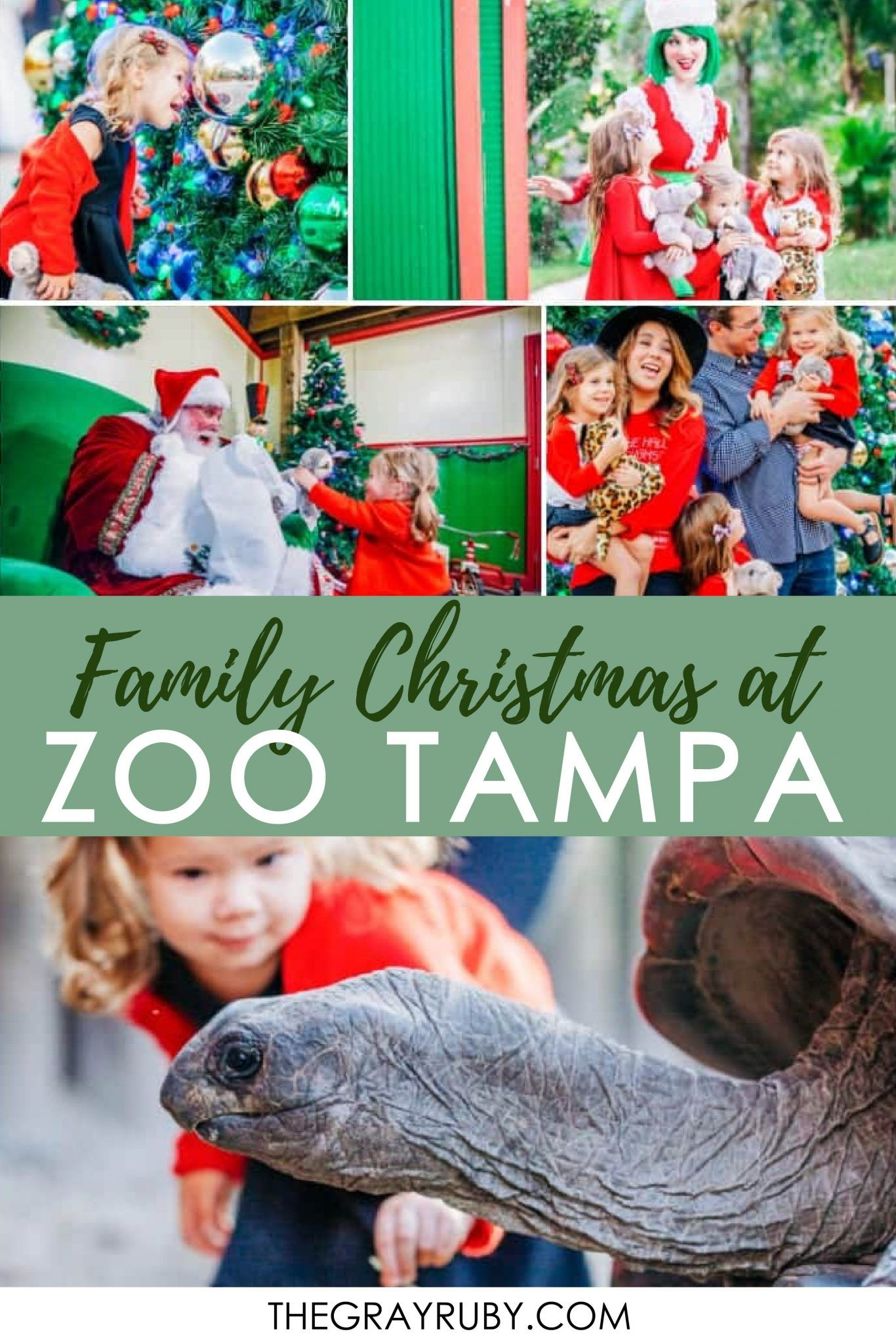 Christmas Events In Tampa Bay 2020 Pin by Siera Duiser   Spreading Magic on Florida in 2020