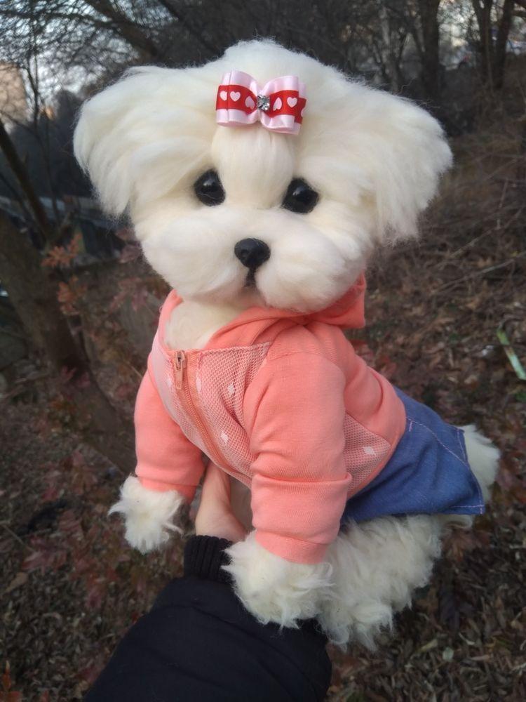 Ooak Needle Felted Real Size Maltese Puppy Dog Dolls Bears