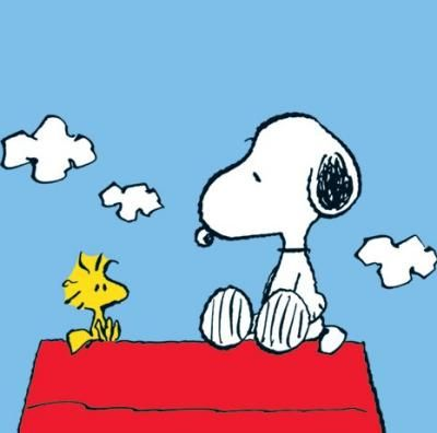 More Snoopy And Woodstock Snoopy Zitate Snoopy Geburtstag