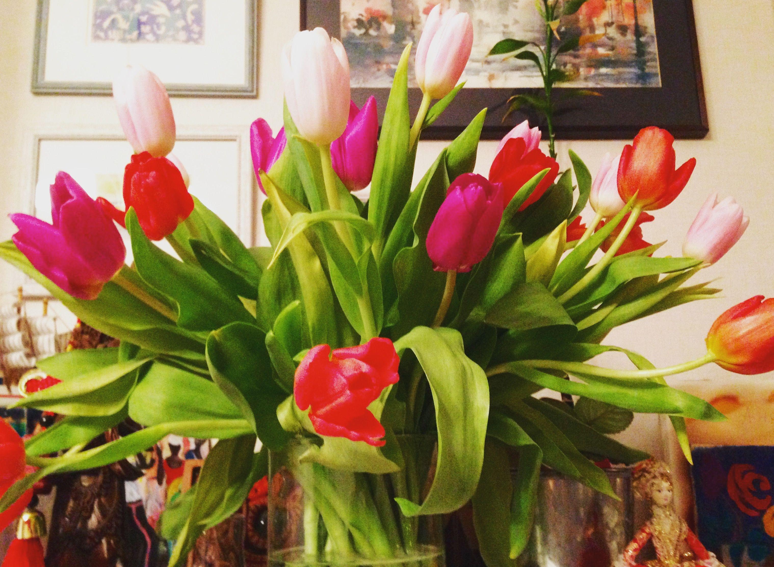 Happy women's day! #flowers #tulips #womensday