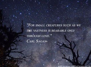 Carl Sagan On Love
