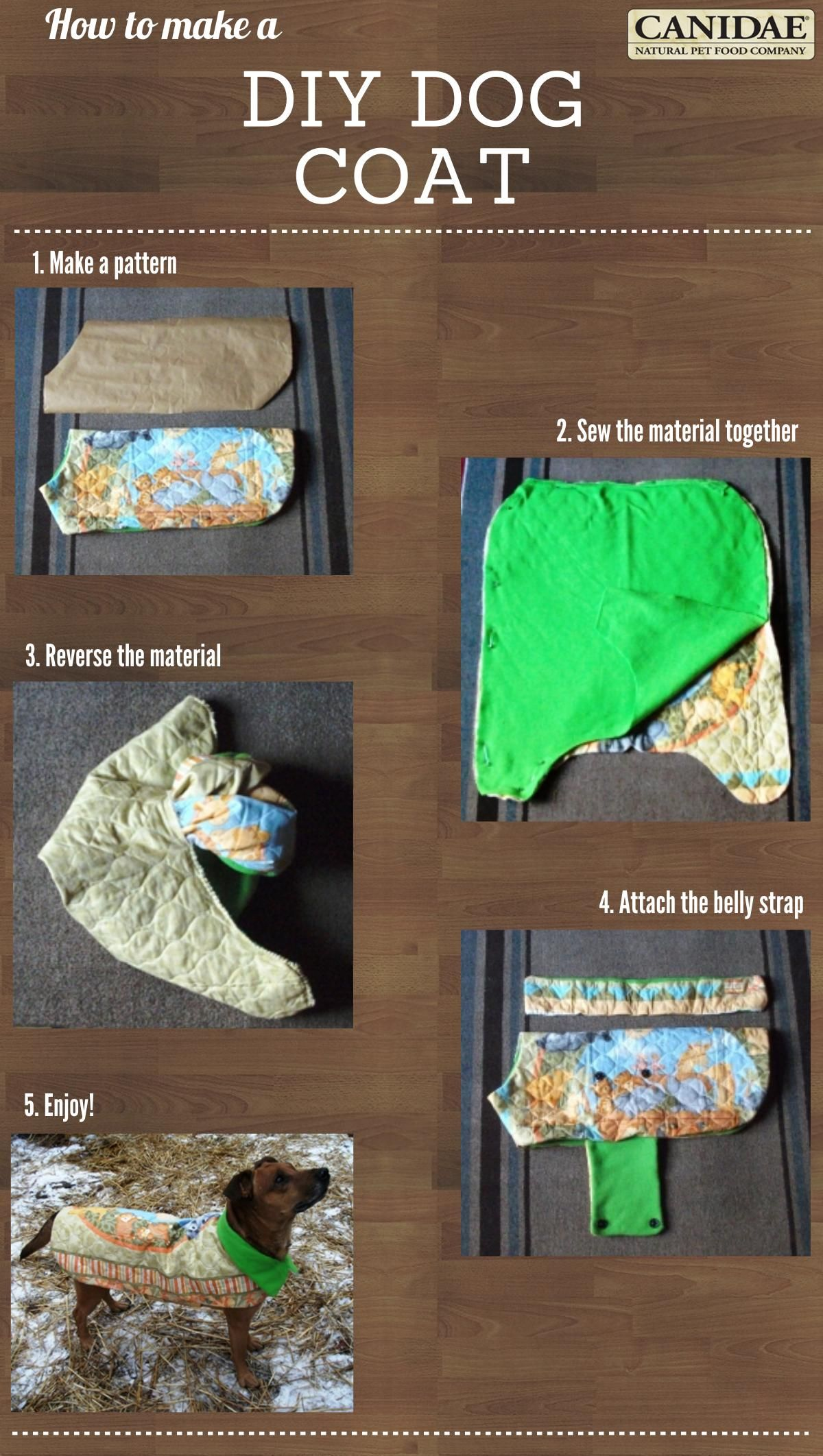 Easy to Make Warm Winter Coat for Your Dog | Sewing