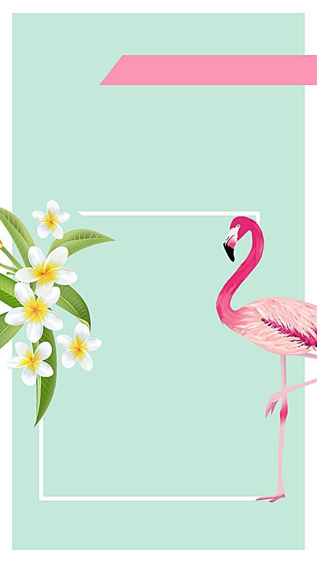 Fundo Elegante Flamingo H5 Cor De Rosa Flamingo Moda Imagem