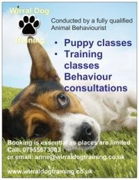 Wirral Dog Training offers one to one behaviour consultations, puppy classes and group training classes throughout the Wirral area. All of our classes are conducted by Anne who has a BSc Animal Behaviour and has been working with dogs for over 15 years. If you dog greets guests by jumping up, or maybe he barks so much it is driving you mad. If walking your dog is a nightmare and not a pleasure, then give us a call or drop us an email and we can help with these and many other problems. All of…