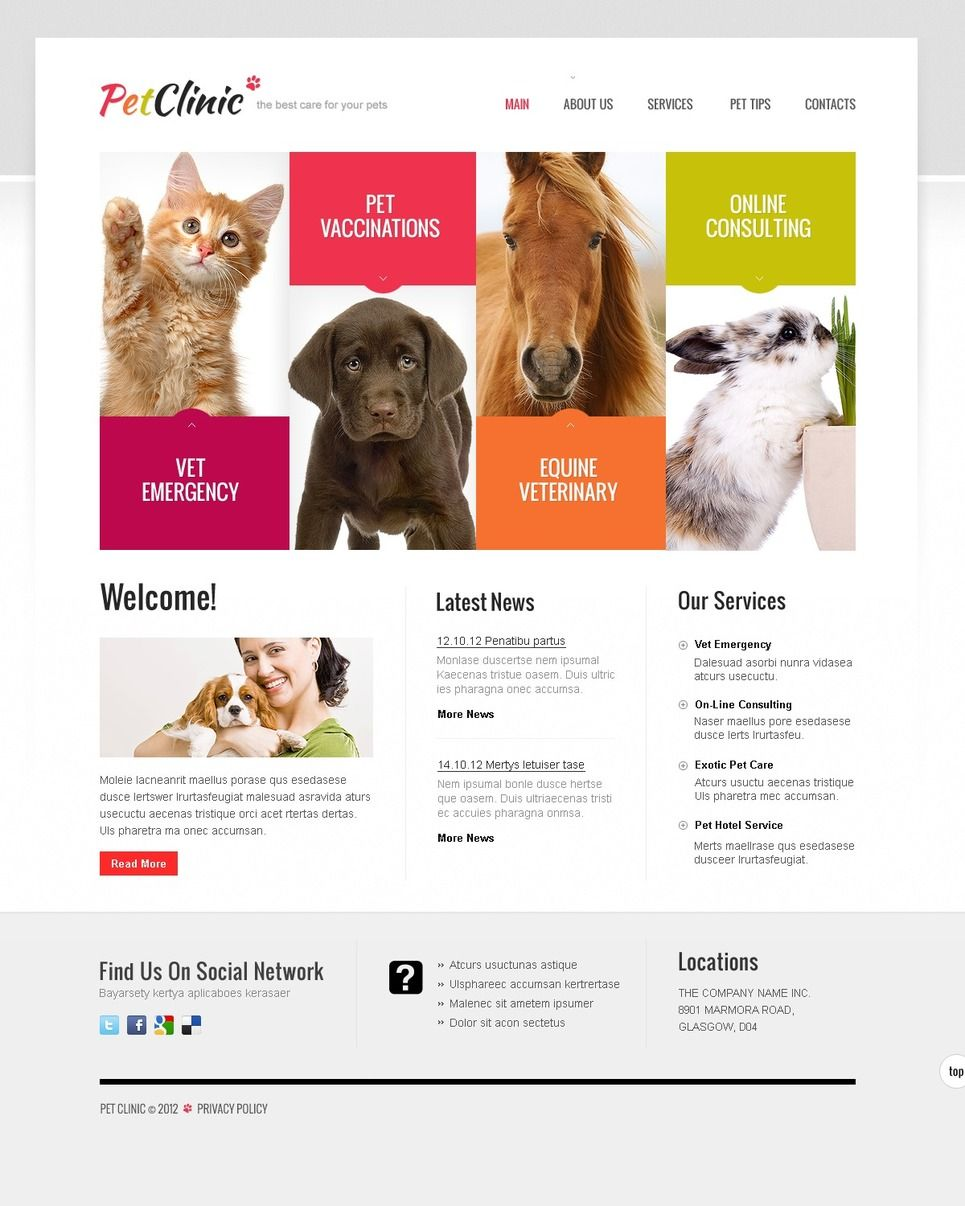 Google Website Templates Dogs Website Template  Buscar Con Google  Web & Graphic Design