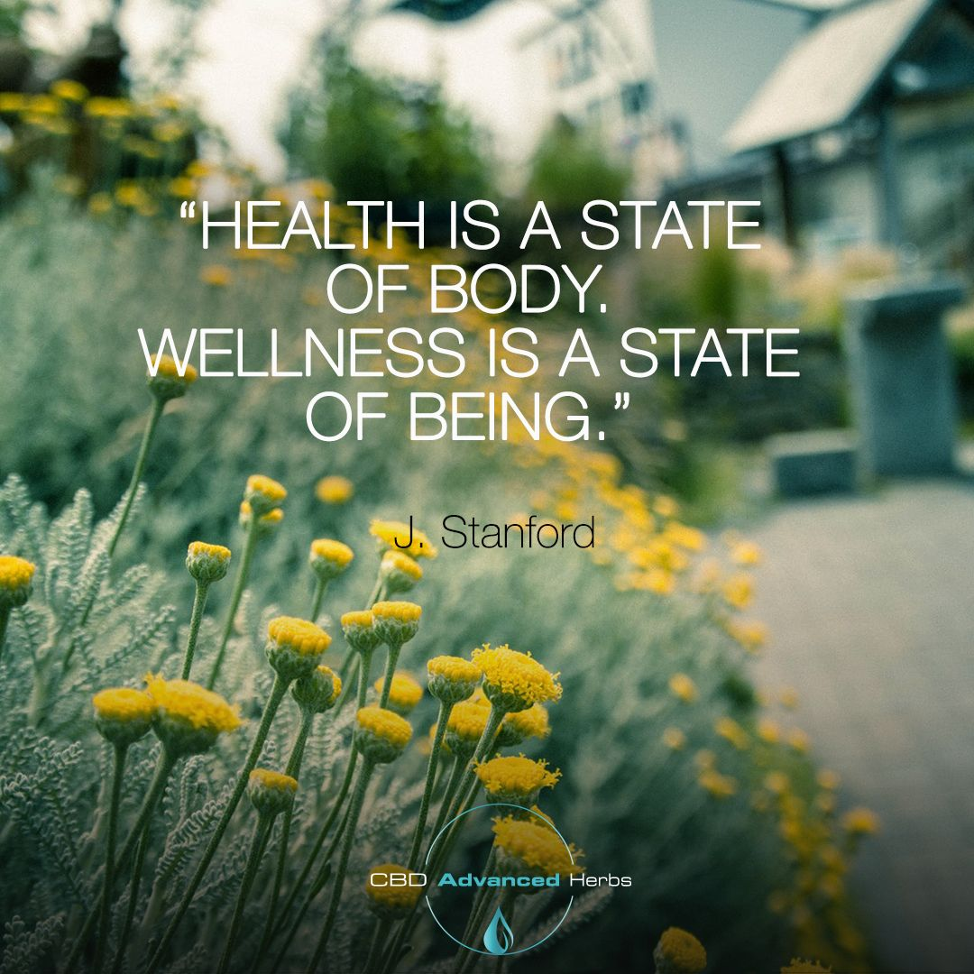 Did You Know There Are 6 Dimensions Of Wellness Emotional