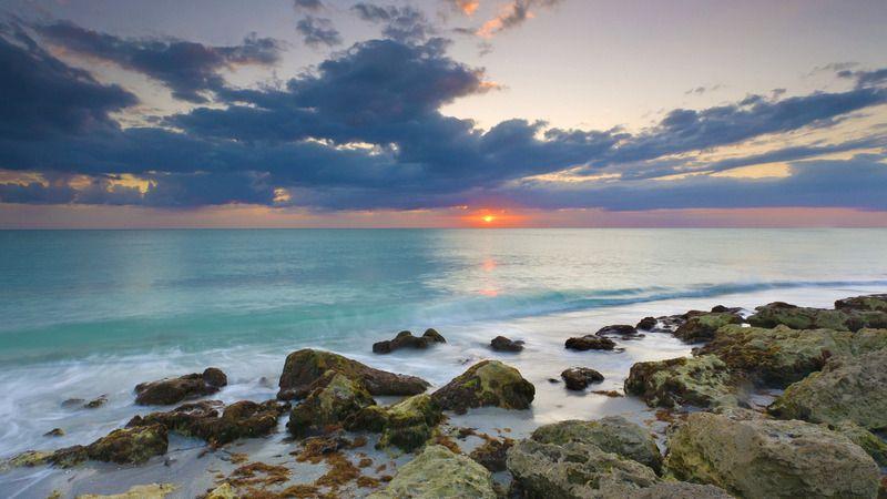 Caspersen Beach Venice Florida Venice Florida Venice Beach Florida Florida Beaches