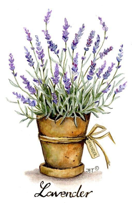 Lavender (Jet)