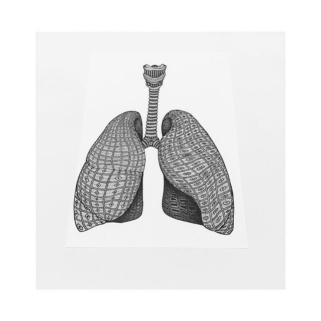 Its All About Human Anatomy Lungs New Artwork Humans Have Two