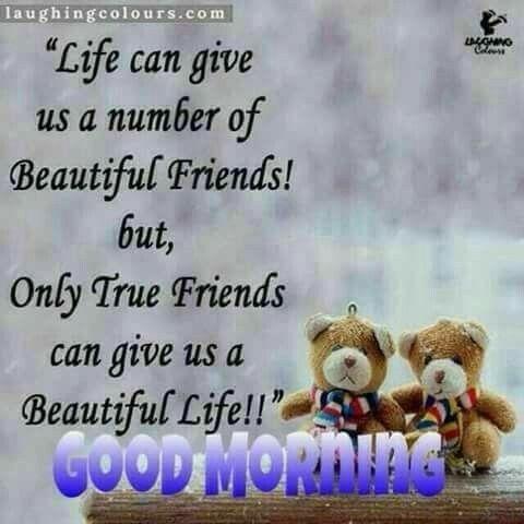 Good morning greetings good morning pinterest friendship good morning greetings m4hsunfo