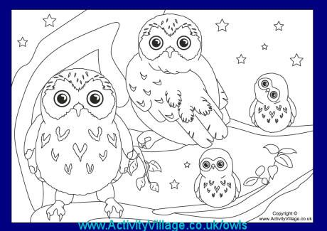 More Owls At Activity Village Owlmoon Your Pinterest Likes