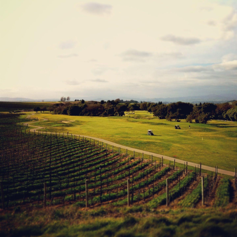 Skylinks Golf Course Long Beach CA
