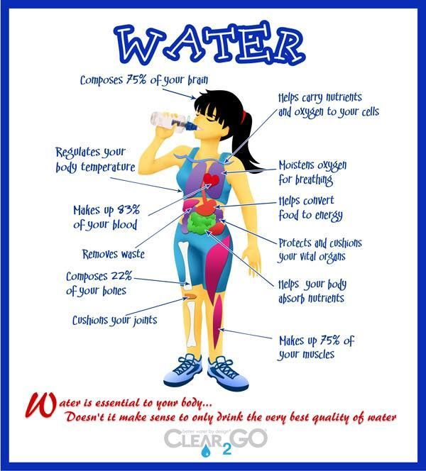 Tips And Tricks To Encourage Better Nutrition: How To Stay Hydrated And Drink More Water