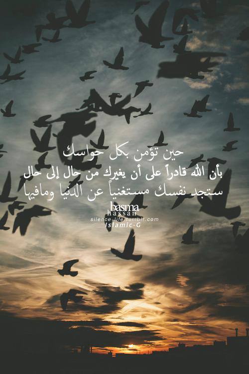 DesertRose CroissantBlank Space LyricsIphone WallpapersIphone Wallpaper Islamic QuotesBird